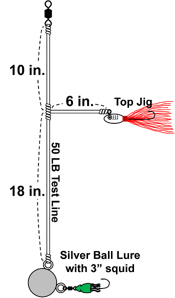 silver-ball-rig-diagram-image-final.png
